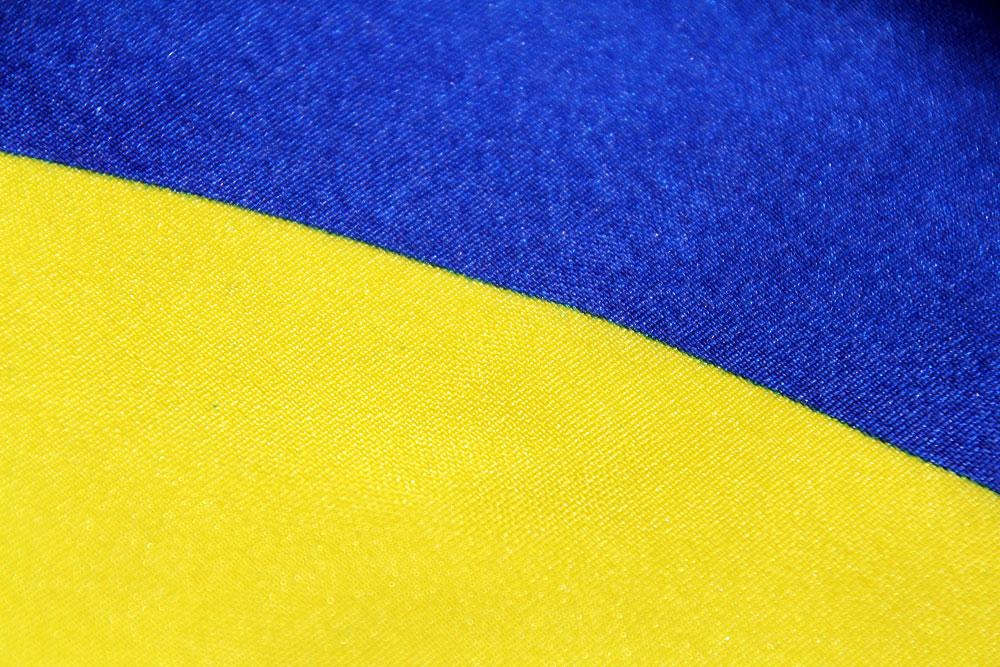 INF-FNI Flag